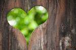 green-valentine